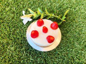 fit cheesecake ricetta